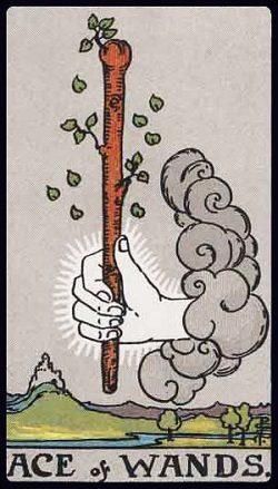 Ass der Stäbe Tarot Tageskarte